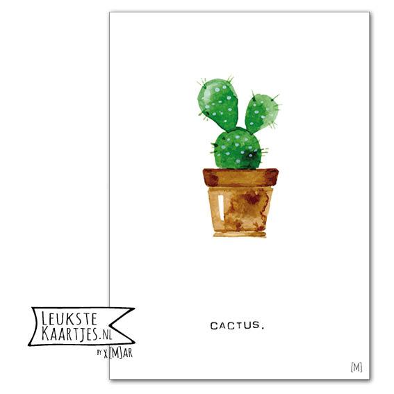 Poster peer cactus